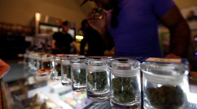 A variety of medicinal marijuana buds in jars are pictured at Los Angeles Patients & Caregivers Group dispensary in West Hollywood