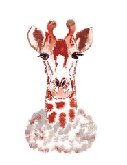 Illustration sketch vertical color portrait of a giraffe isolated on white background