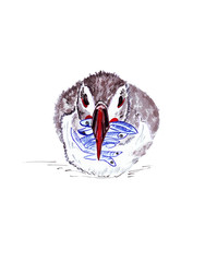 Illustration with vivid color portrait of a penguin as a picture with watercolors