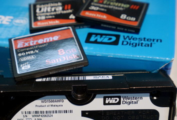 A variety of SanDisk memory cards are seen with a Western Digital hard drive in Golden