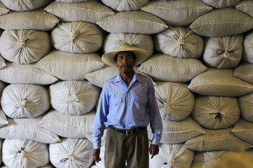 A member of the Santa Adelaida coffee cooperative poses for a picture at a warehouse of bourbon coffee for export in La Libertad