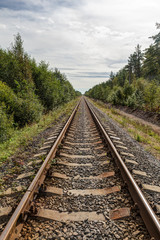 Single-track railway in the forest