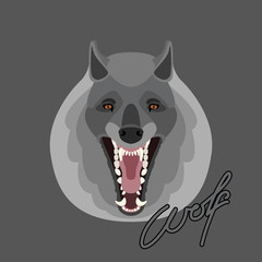 wolf face vector illustration style Flat