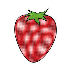 cartoon strawberry ingredient fruit icon vector illustration