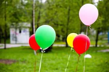 Colored balloons on a background of forest green, BBQ, picnic