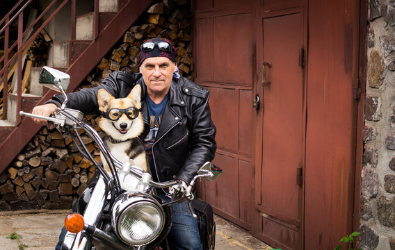 The biker and his dog are sitting on a motorcycle.