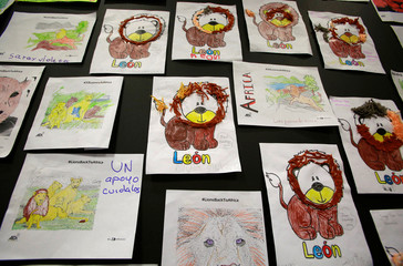 Drawings of lions made by children are seen at the El Dorado Airport in Bogota