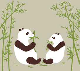 c072089559e Two pandas eat bamboo in the bambоо forest