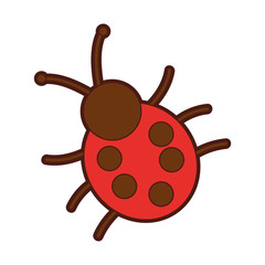 cute ladybug isolated icon vector illustration design