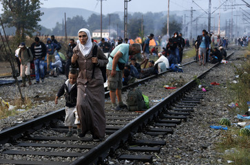 Syrian refugees make their way towards the Greek-Macedonian border, near the village of Idomeni
