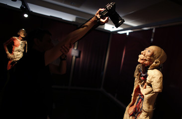 A photographers takes pictures of a preserved human body, on display in the exhibition 'Bodies Revealed' in Sofia