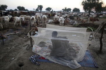 A man from the Dinka Ngok cattle herder tribe wakes up in a mosquito tent in a cattle camp near the town of Abyei