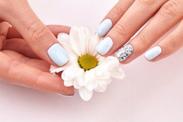 Fototapete - Close-up of flower and female manicure.