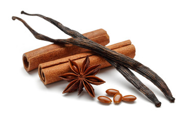 Cinnamon and vanilla sticks with star anise