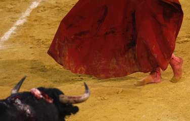 Spanish matador Jimenez Fortes prepares to perform a pass to a bull during a bullfight in Almeria