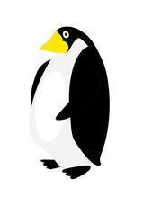 penguin - royal penguin