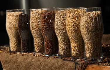 Glasses filled with different malts and hops over a wooden background. Variety of malt for brewery.
