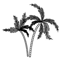 black silhouette with two palm trees vector illustration
