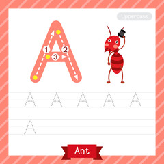 Letter A uppercase tracing practice worksheet with ant for kids learning to write. Vector Illustration.