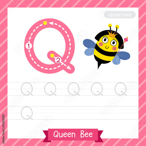 Letter Q Uppercase Tracing Practice Worksheet With Queen Bee For