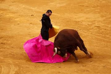"Spanish bullfighter Manzanares performs a pass to a bull during the ""Corrida Goyesca"" bullfight in Ronda"