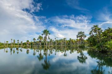 Lagoa das Araras, Mato Grosso, Brasilien
