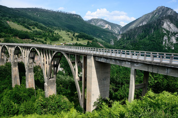 Мост Джурджевича через реку Тара летом в Черногории