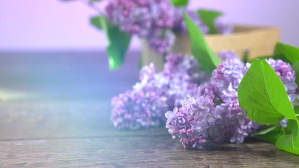 Klistermärke - Lilac spring flowers bunch over wooden background. 3840X2160 4K UHD video. Slow motion 240 fps