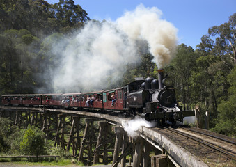 A Puffing Billy steam train hauled by locomotive 14A crosses the Monbulk Creek trestle after leaving Belgrave station near Melbourne