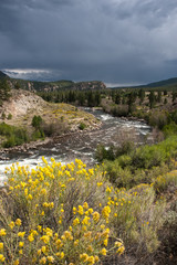 Rabbitbrush, River and Stormy Mountain Sky