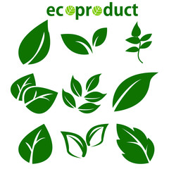 Green Leaves Collection. Leaves icon vector set isolated on white background. Various shapes of green leaves of trees and plants. Elements for eco and bio logos. Ecology symbol