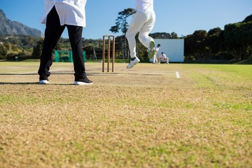 Close up of team playing cricket on pitch