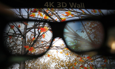 An image is pictured through 3D glasses at Christie's 4K 3D technology projection screen at the 3D and Virtual Reality Expo in Tokyo