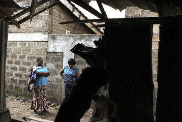 Neighbours look at the damage caused, the day after an explosion at the Anglican Church of Kenya Sunday school in Nairobi
