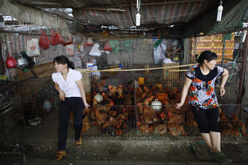 Vendors sit next to a chicken coop at a market in Shanghai