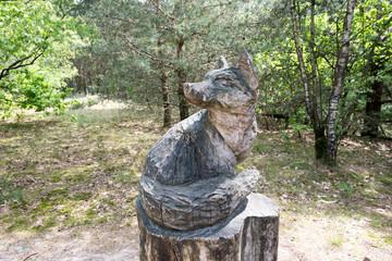 Fuchs in den Massduinen
