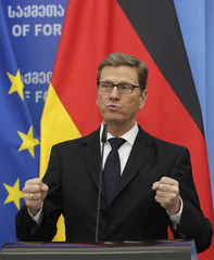 German Foreign Minister Guido Westerwelle speaks to media in Tbilisi