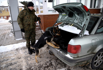 Polish border guard with a dog checks a car at a border crossing point with Russia in Goldap