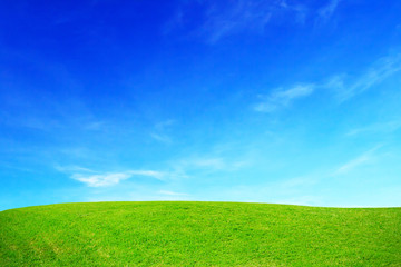Green grass hills and blue sky.