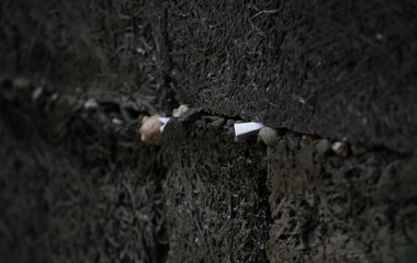 "A paper note is placed in the ""death wall"" at the former Nazi German concentration and extermination camp Auschwitz-Birkenau in Oswiecim"