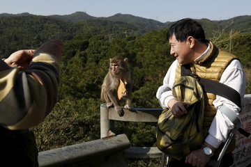 A visitor poses for a photo with a monkey at a country park in Hong Kong