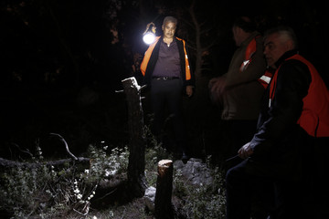 Grigoris Gourdomichalis, head of an environmental group, points a torch at cut trees on Mount Egaleo in Athens