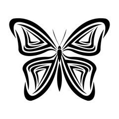 butterfly tribal tatto animal creativity design vector illustraiton