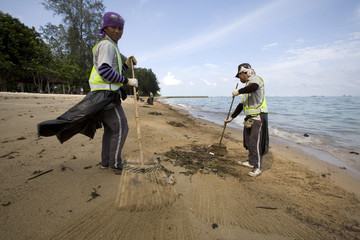 Workers clean up oil and debris from a beach in Singapore