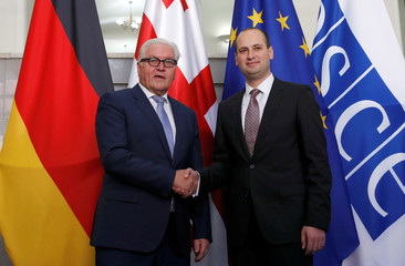 Georgia's Foreign Minister Janelidze shakes hands with his German counterpart Steinmeier in Tbilisi