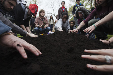 """People affiliated with Occupy Toronto group take part in """"Occupy Gardens"""" where they plant vegetable seeds at Queens park during May Day protests in Toronto"""