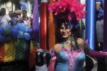Reveller takes part in a Gay Pride parade in Santo Domingo