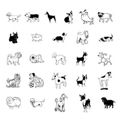 dog collection clipart collection set