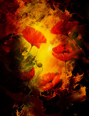 poppy flower on abstract color background. Fire effect.