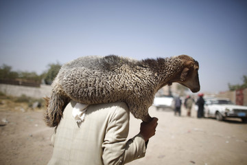A man carries a sheep he bought from a livestock market ahead of the Eid al-Adha festival in Sanaa